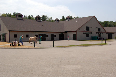 New England Equine Surgical And Medical Center Equine