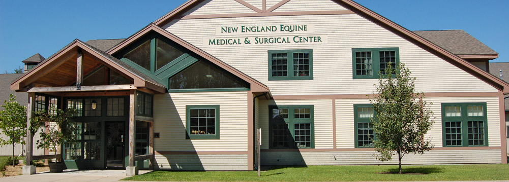Contact Us New England Equine Surgical And Medical